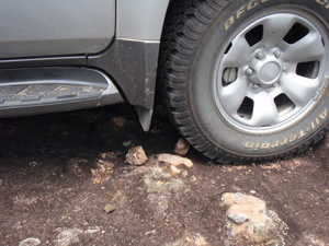 Bushrock crushed under a car tyre